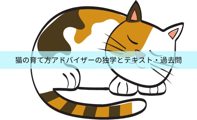 猫の育て方アドバイザーは独学で取得できる?テキストと過去問